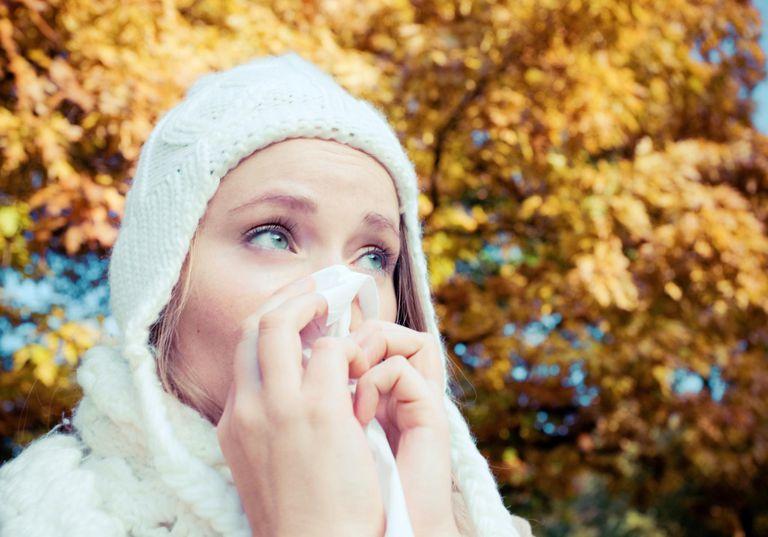 allergi på hösten